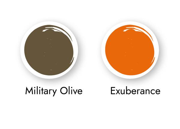 Colour Analysis - Colours for Autumn