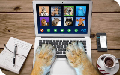 Video calls – tips to present yourself well, feel confident and gain engagement!